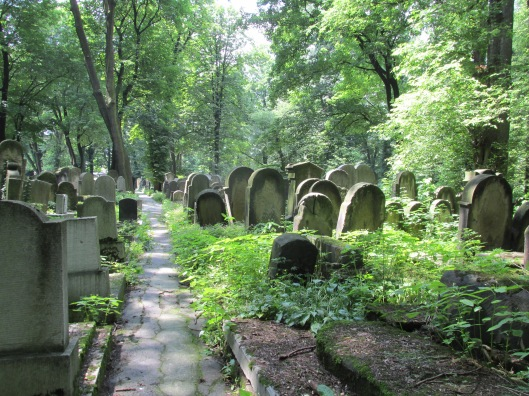 New Jewish Cemetery (1800s) in Krakow, Poland