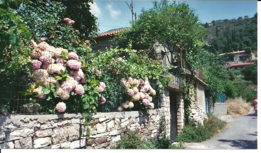 Greece Vasta house