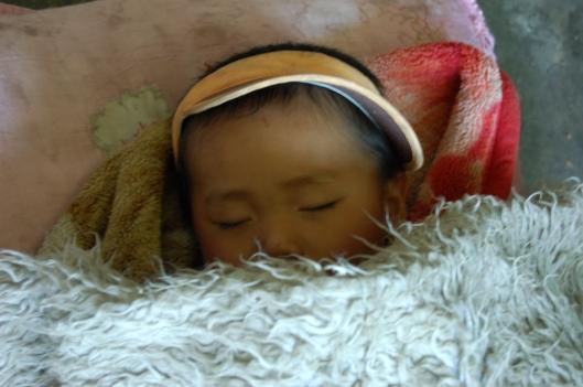 Tibet 2011 - Lex 473