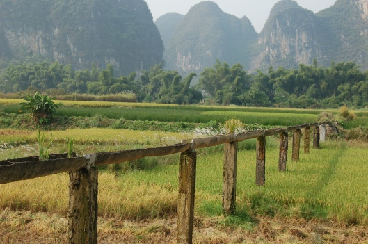 Irrigation system and limestone karsts, Yangshuo, China