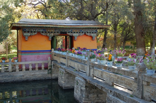 China and Tibet 2009 313
