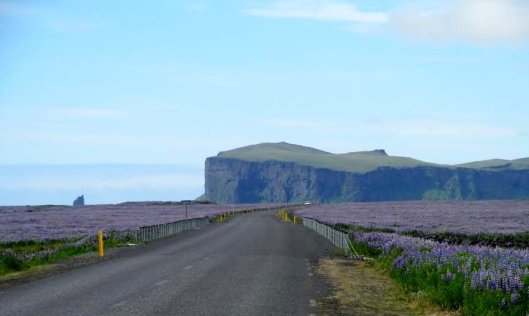 Chilling out to Kacey Musgraves on the Ring Road, Iceland