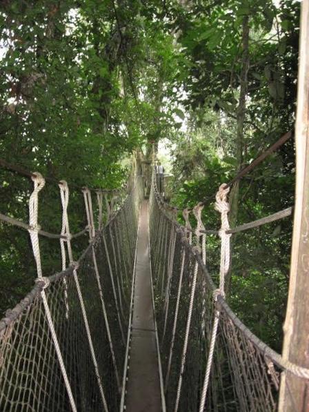 Kakum Canopy Walk, Ghana