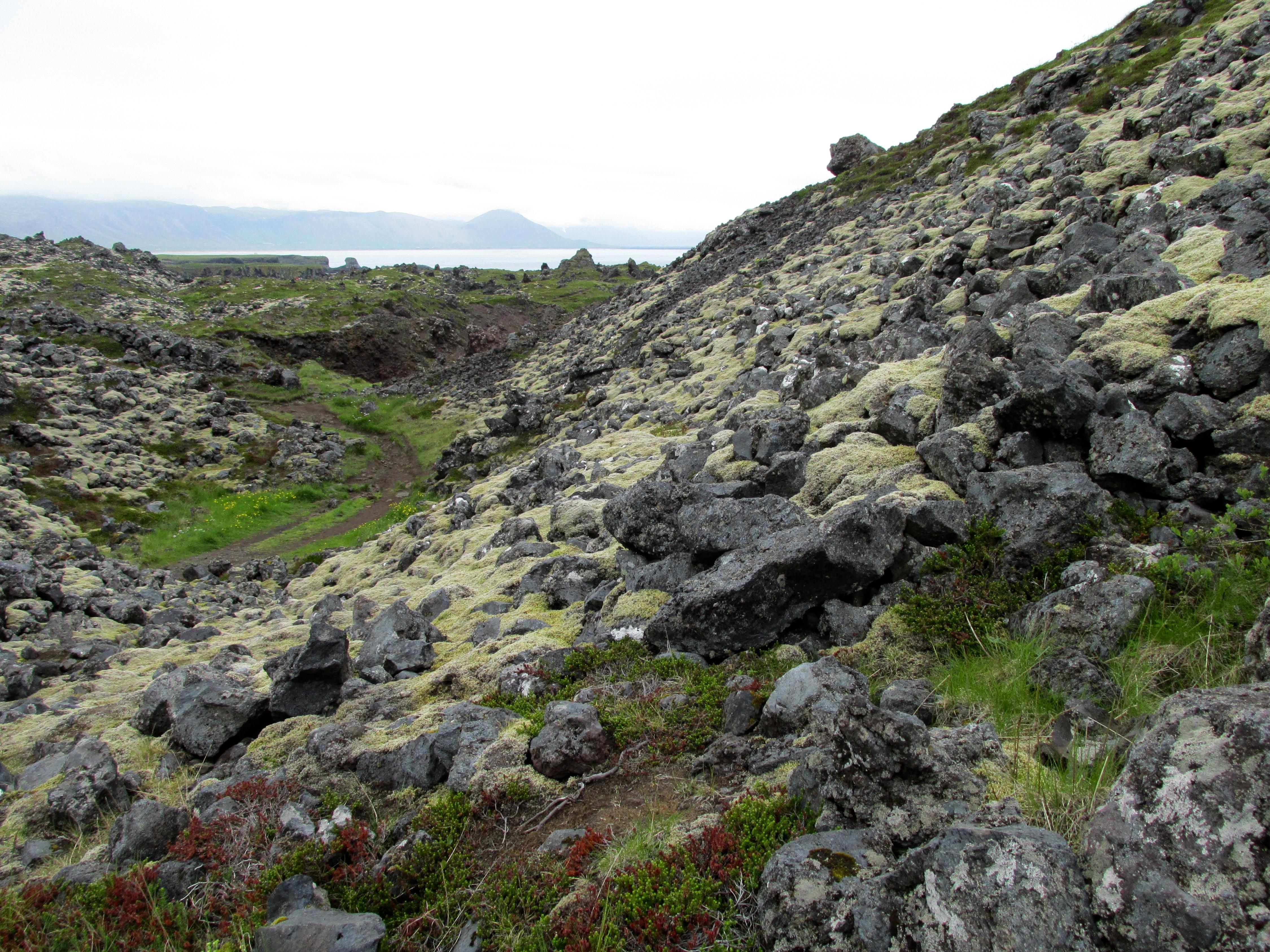 Iceland June 2014 266
