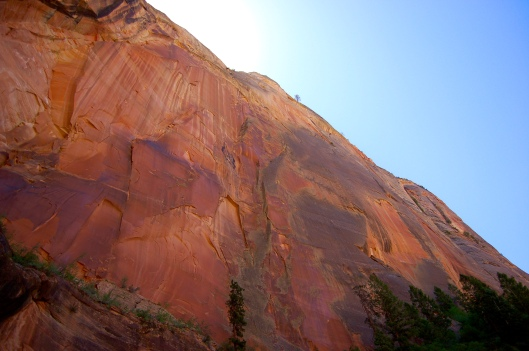 Zion and Bryce 2012 079