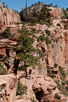 Zion and Bryce 2012 099