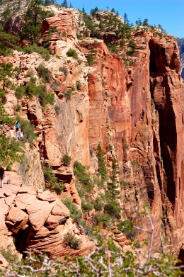 Zion and Bryce 2012 100