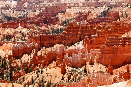 Zion and Bryce 2012 130