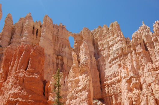 Zion and Bryce 2012 154