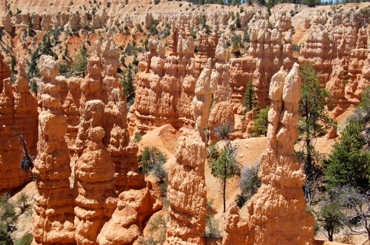 Zion and Bryce 2012 188