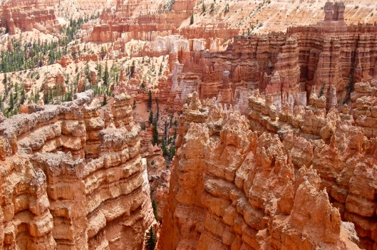 Zion and Bryce 2012 195