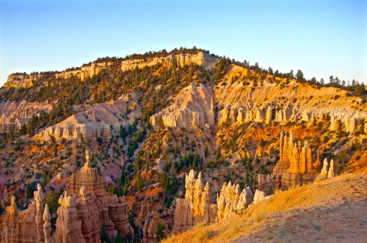 Zion and Bryce 2012 219